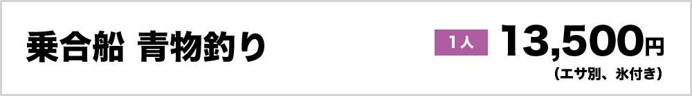 乗合船青物釣り1人13,500円(エサ別、氷付き)