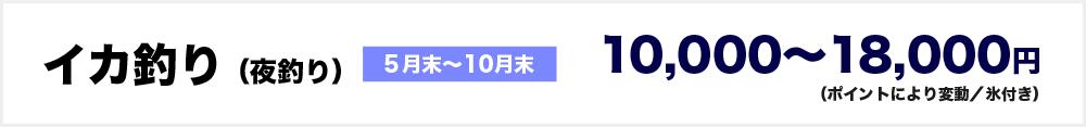 イカ釣り(夜釣り)5月末~10月末 10000~18000円(ポイントにより変動/氷付き)