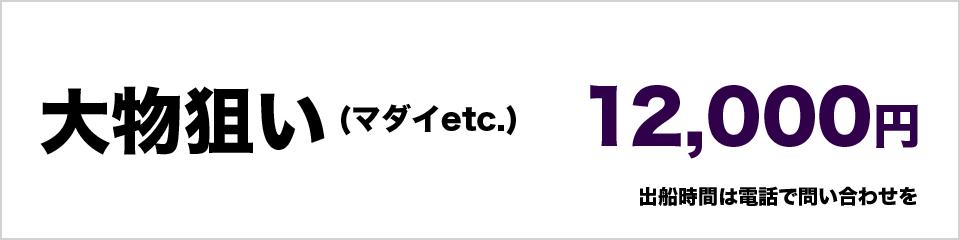 大物狙い(マダイetc)12000円 出船時間は電話で問い合わせを