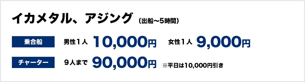 イカメタル、アジング(出船~5時間) <乗合船>男性1人1万円、女性9,000円 <チャーター>90,000円(9人まで) ※平日は1万円引き