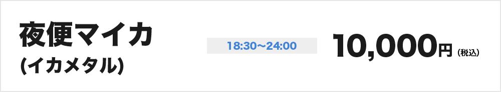 夜便マイカ(イカメタル)18:30-24:00 10,000円(税込)