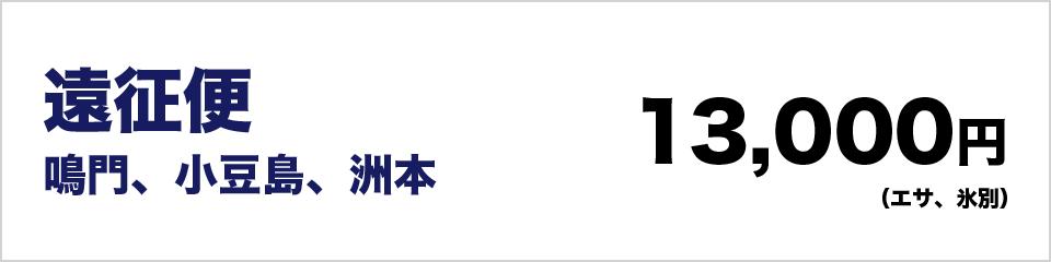 遠征便鳴門、小豆島、洲本13000円(エサ、氷別)