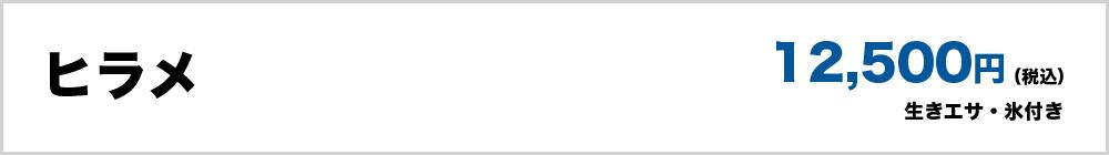 ヒラメ(生きエサ・氷付き)12,500円(税込)