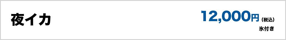 夜イカ(氷付き)12,000円(税込)
