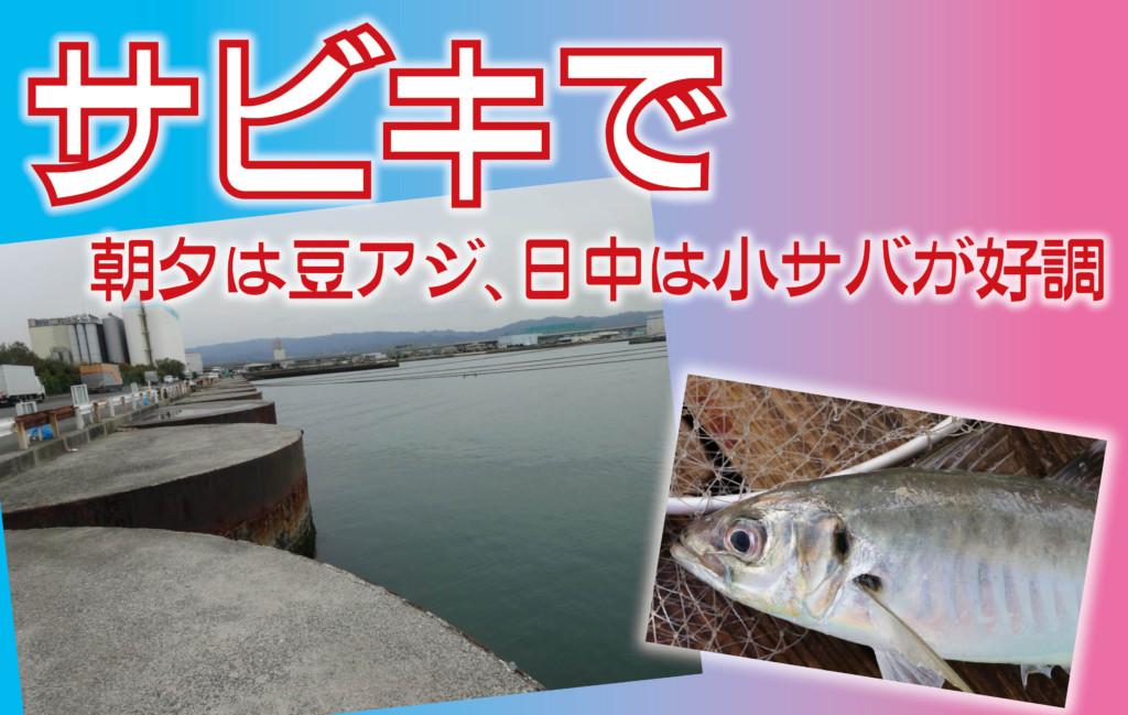 釣果 関西