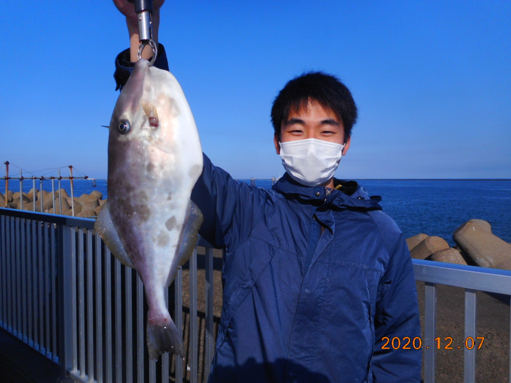 鹿島 釣り 公園 釣果