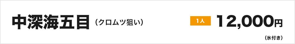 中深海五目(クロムツ狙い)1人12,000円(氷付き)