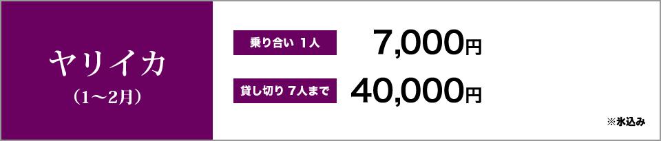 ヤリイカ(1~2月) 乗り合い1人7,000円 貸し切り7人まで40,000円 ※氷込み