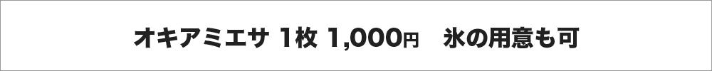 オキアミエサ1枚1,000円、氷の用意も可
