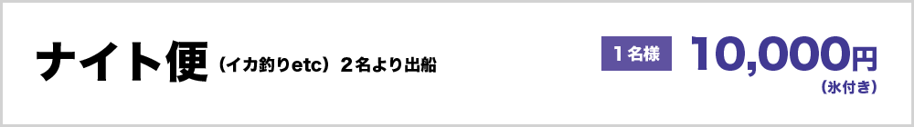 ナイト便(イカ釣りetc)2名より出船 1名様 10000円 ※氷付き